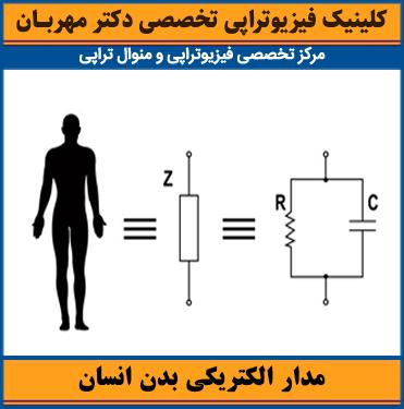 مدار الکتریکی بدن انسان