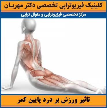 تاثیر ورزش بر درد پایین کمر